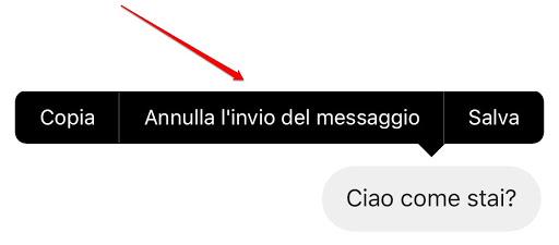 Annulla invio del messaggio Direct